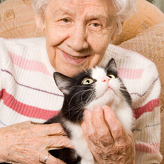 Free Cats for Seniors